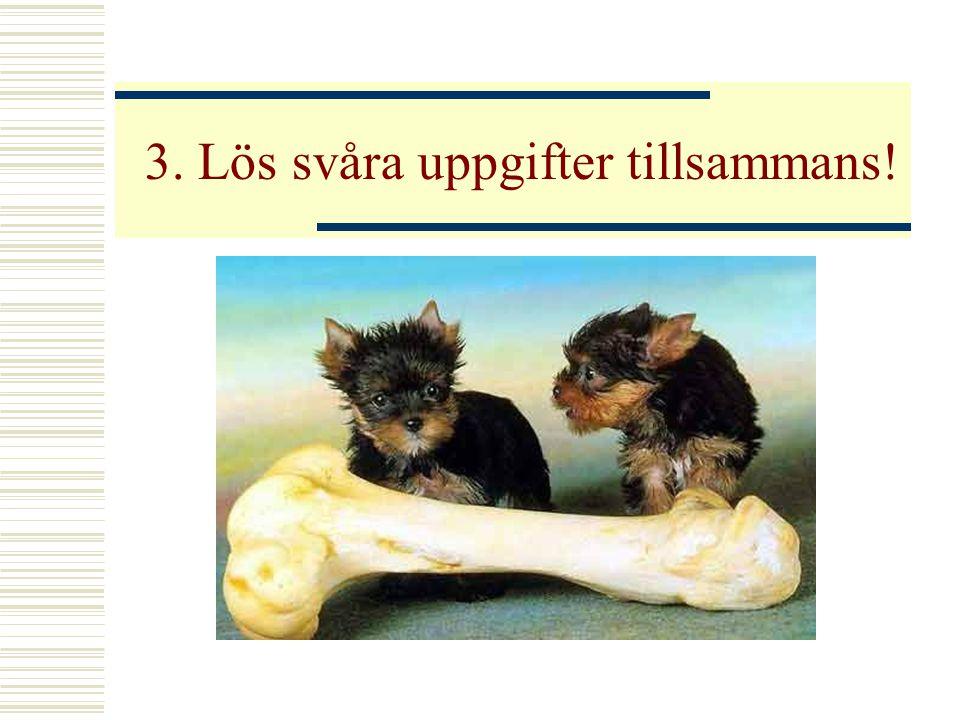 3. Lös svåra uppgifter tillsammans!