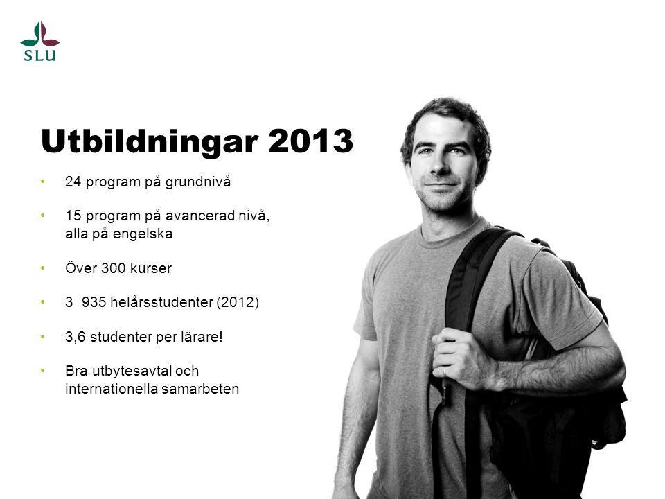 Utbildningar 2013 24 program på grundnivå