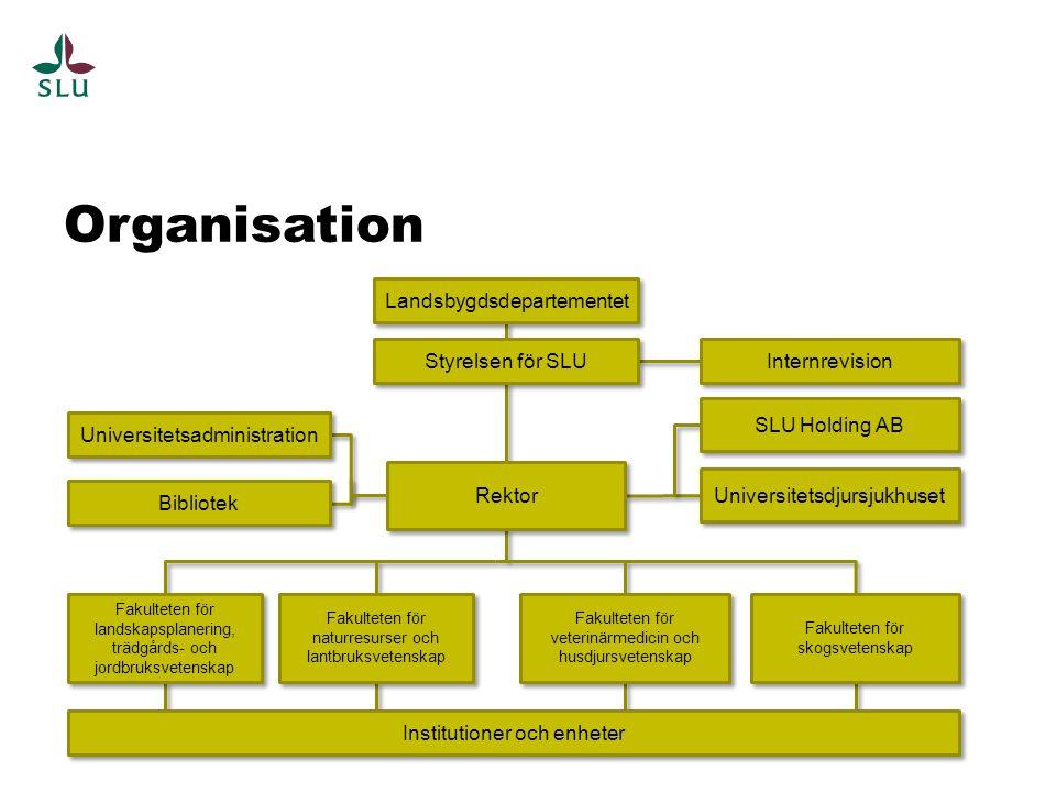 Organisation Landsbygdsdepartementet Styrelsen för SLU Internrevision
