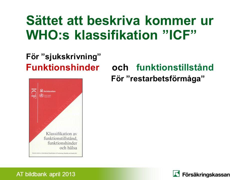 Sättet att beskriva kommer ur WHO:s klassifikation ICF