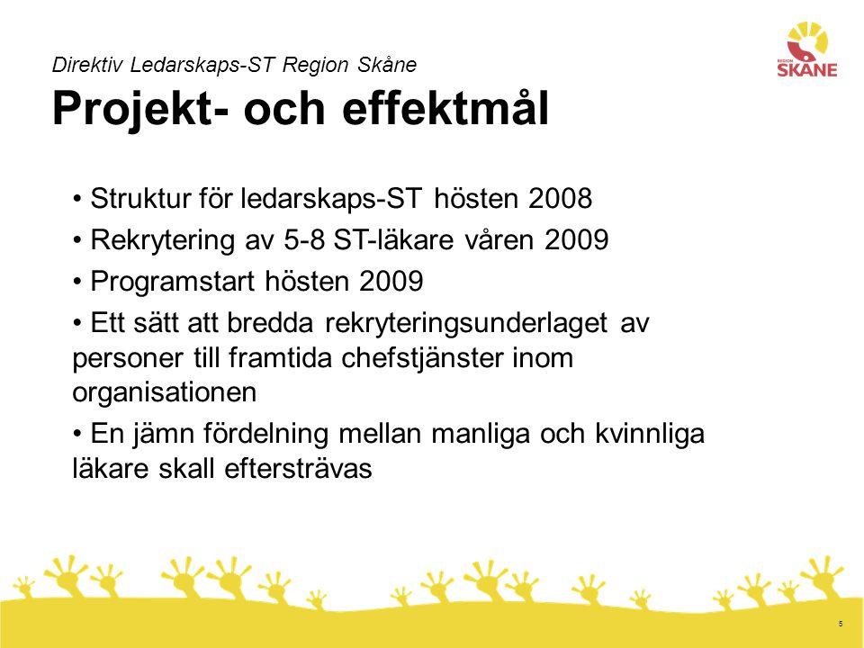 Struktur för ledarskaps-ST hösten 2008
