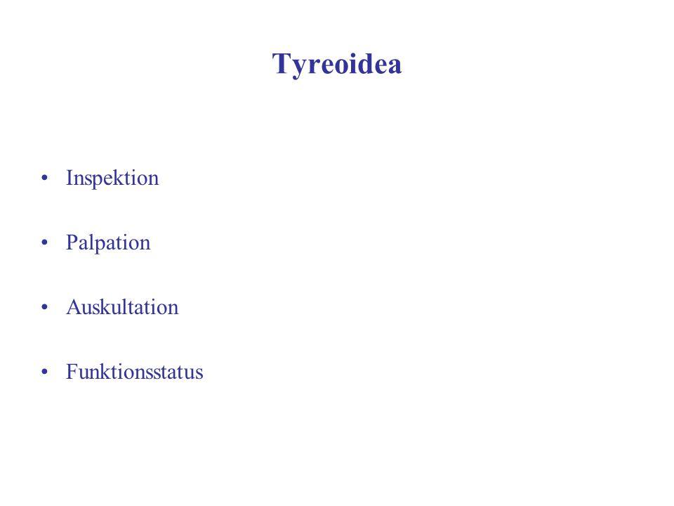Tyreoidea Inspektion Palpation Auskultation Funktionsstatus