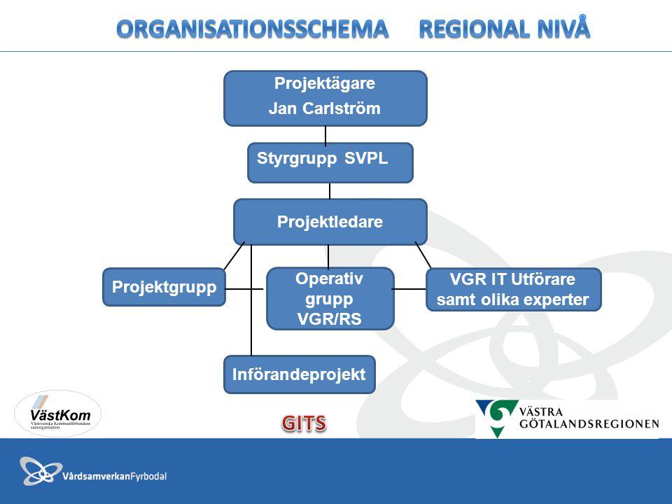 Organisationsschema REGIONAL NIVÅ VGR IT Utförare samt olika experter