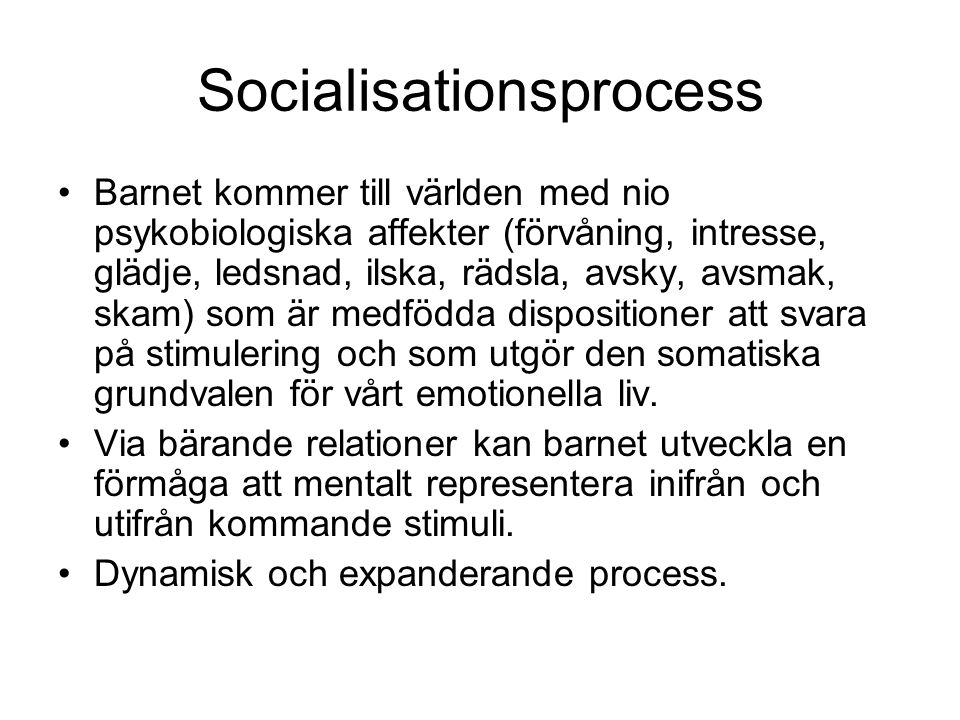 Socialisationsprocess