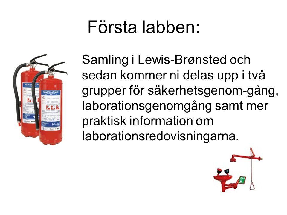 Första labben: