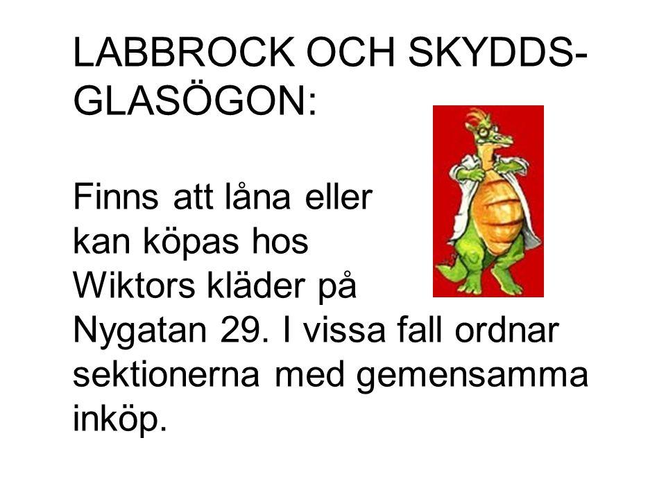 LABBROCK OCH SKYDDS-GLASÖGON: Finns att låna eller kan köpas hos Wiktors kläder på Nygatan 29.