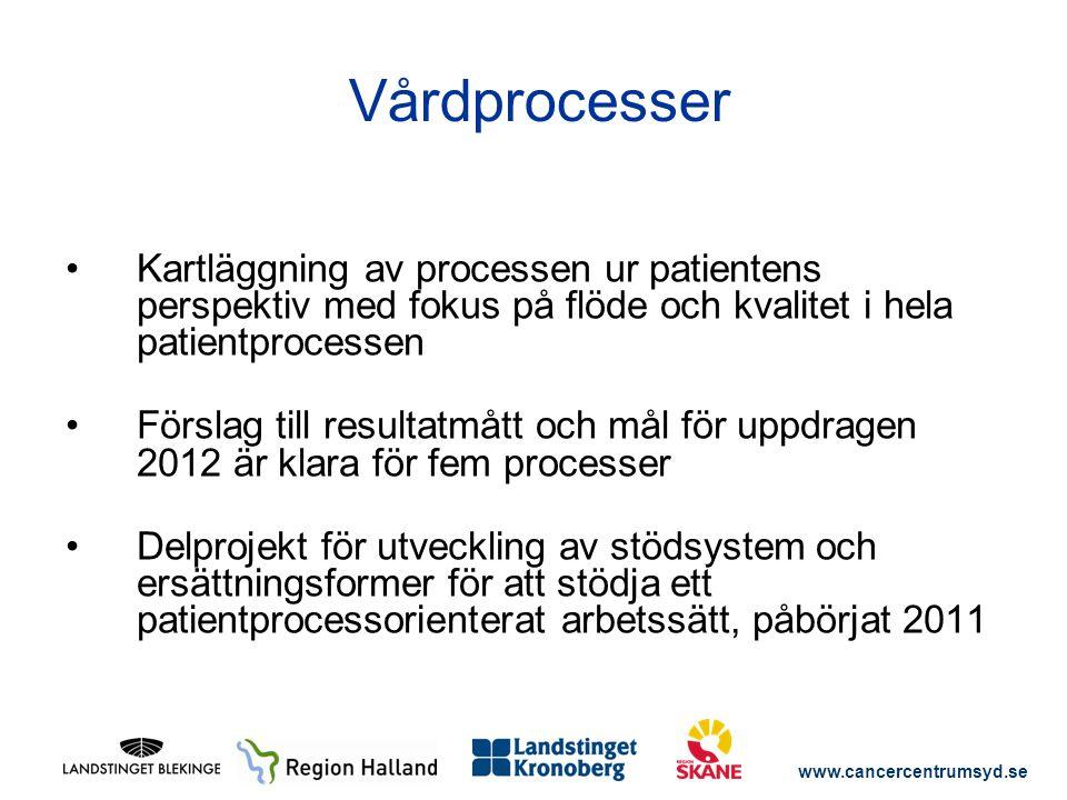 Vårdprocesser Kartläggning av processen ur patientens perspektiv med fokus på flöde och kvalitet i hela patientprocessen.