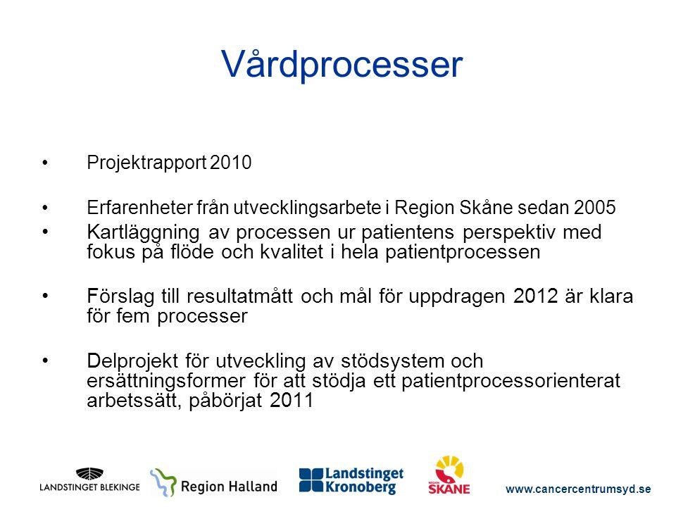 Vårdprocesser Projektrapport 2010. Erfarenheter från utvecklingsarbete i Region Skåne sedan 2005.