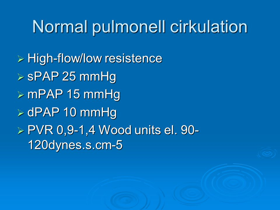 Normal pulmonell cirkulation
