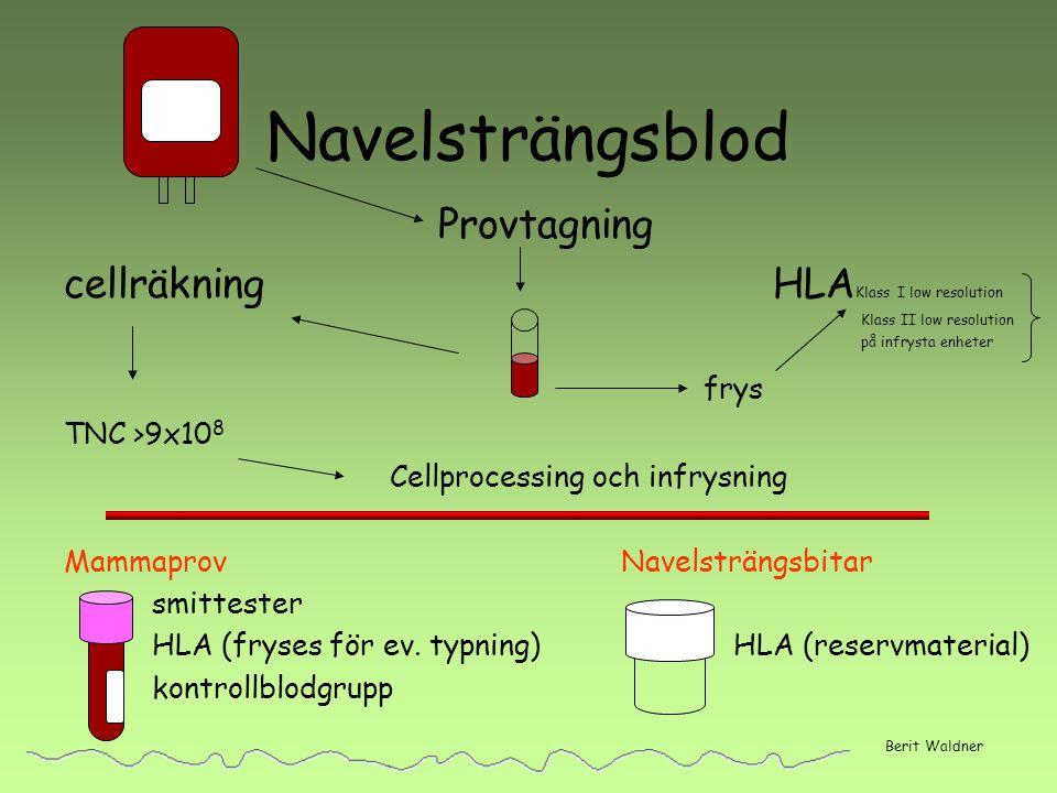 Navelsträngsblod Provtagning cellräkning HLAKlass I low resolution