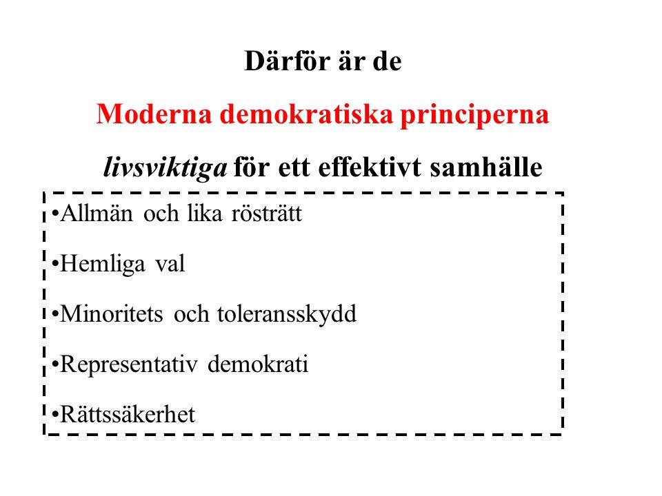 Moderna demokratiska principerna