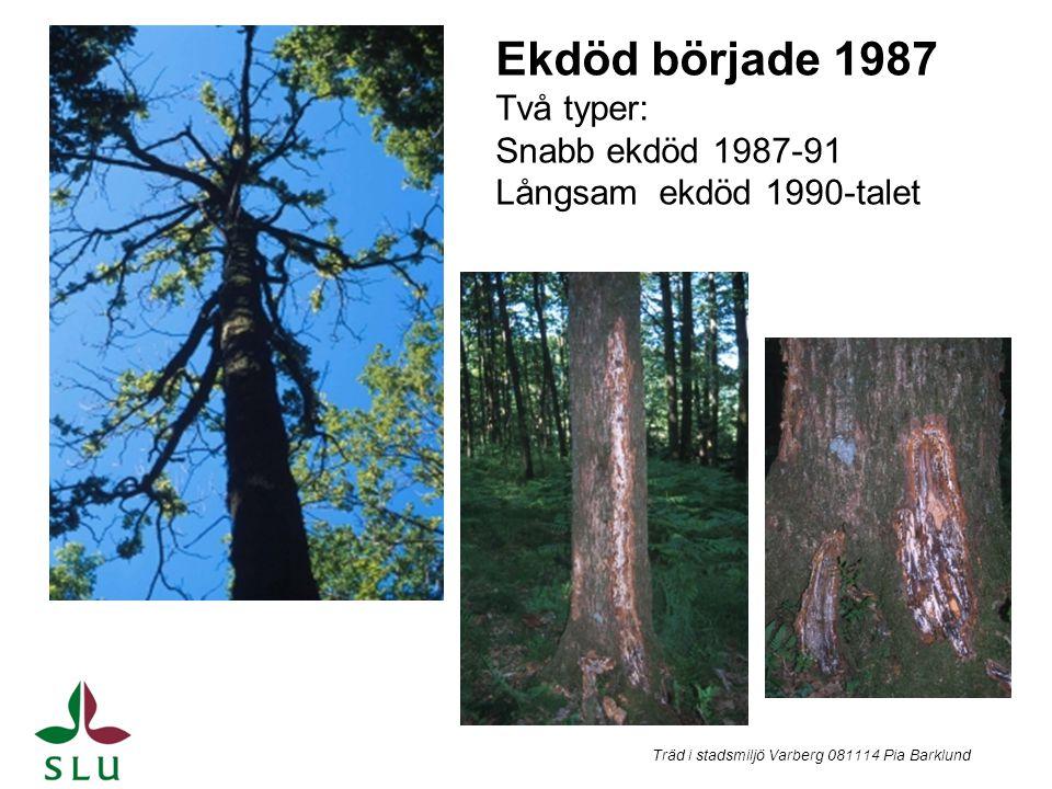 Ekdöd började 1987 Två typer: Snabb ekdöd 1987-91