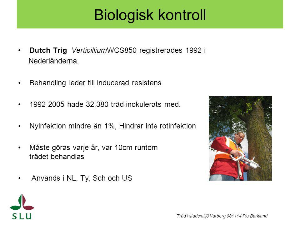 Biologisk kontroll Dutch Trig VerticilliumWCS850 registrerades 1992 i