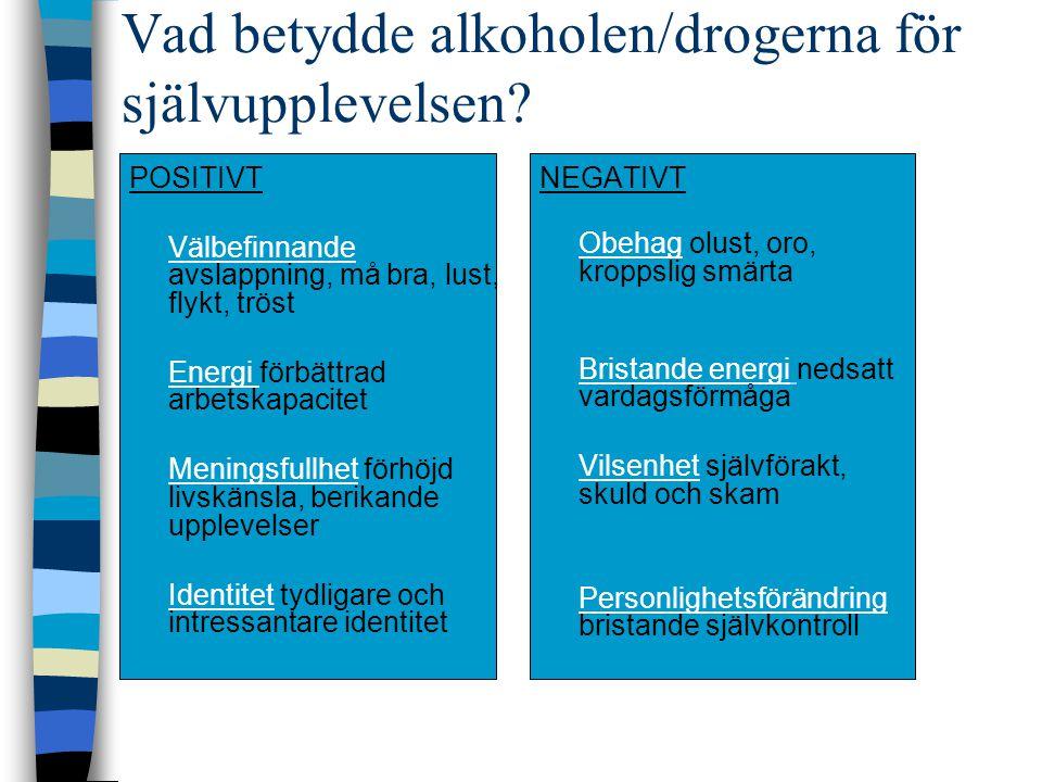 Vad betydde alkoholen/drogerna för självupplevelsen