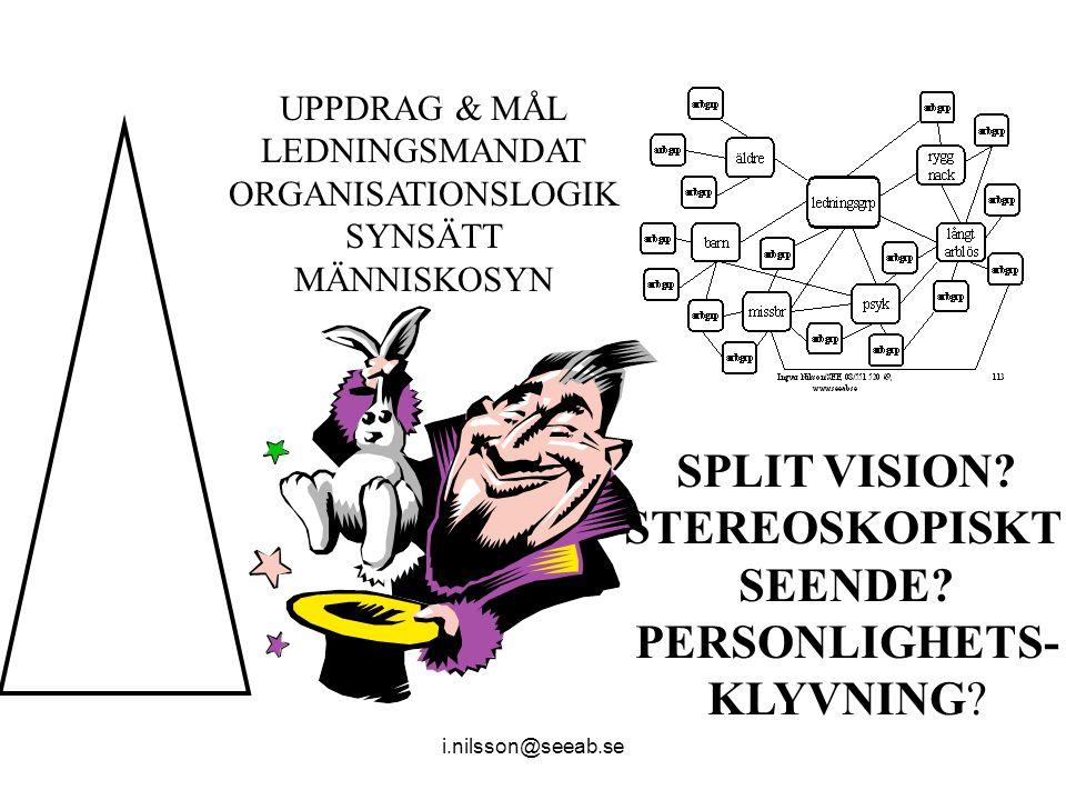 SPLIT VISION STEREOSKOPISKT SEENDE PERSONLIGHETS-