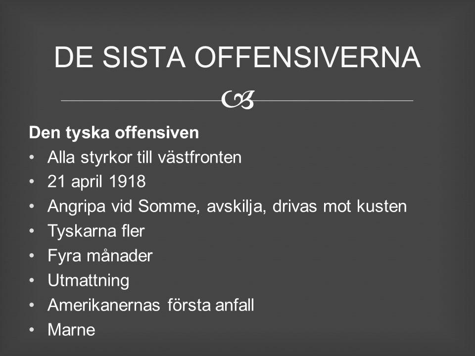 DE SISTA OFFENSIVERNA Den tyska offensiven
