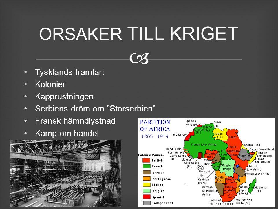 ORSAKER TILL KRIGET Tysklands framfart Kolonier Kapprustningen