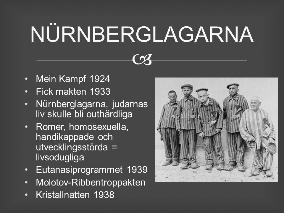 NÜRNBERGLAGARNA Mein Kampf 1924 Fick makten 1933