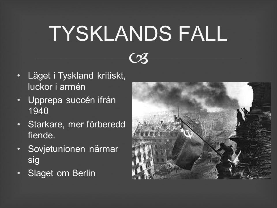 TYSKLANDS FALL Läget i Tyskland kritiskt, luckor i armén