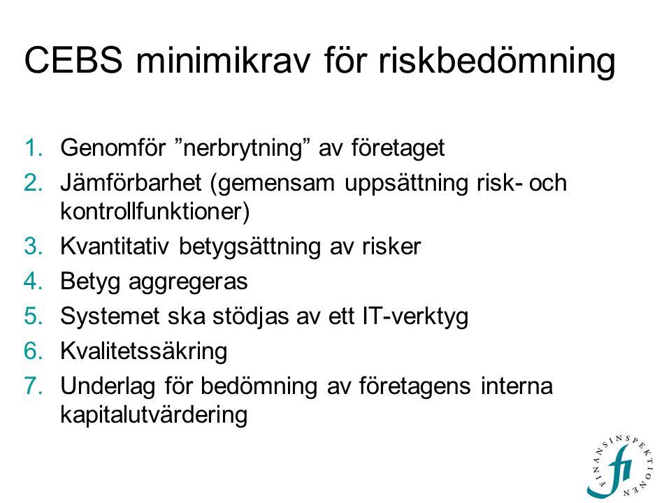CEBS minimikrav för riskbedömning
