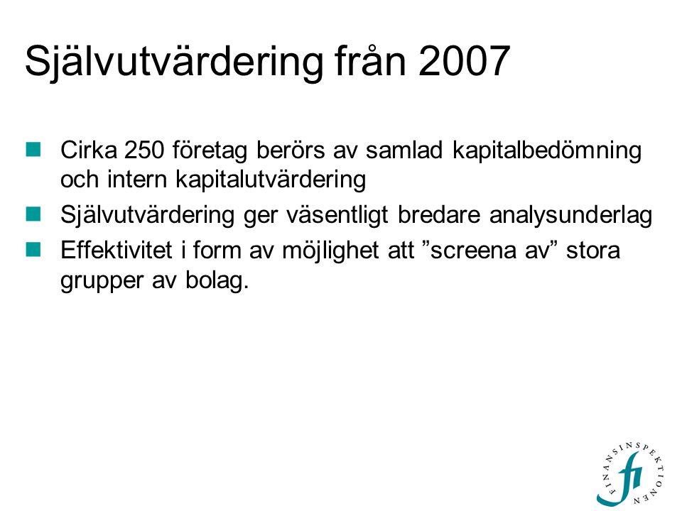 Självutvärdering från 2007