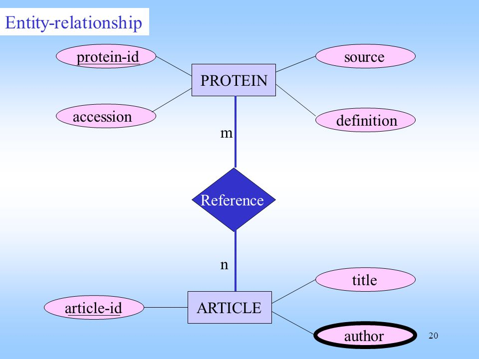 Entity-relationship Reference protein-id accession definition source