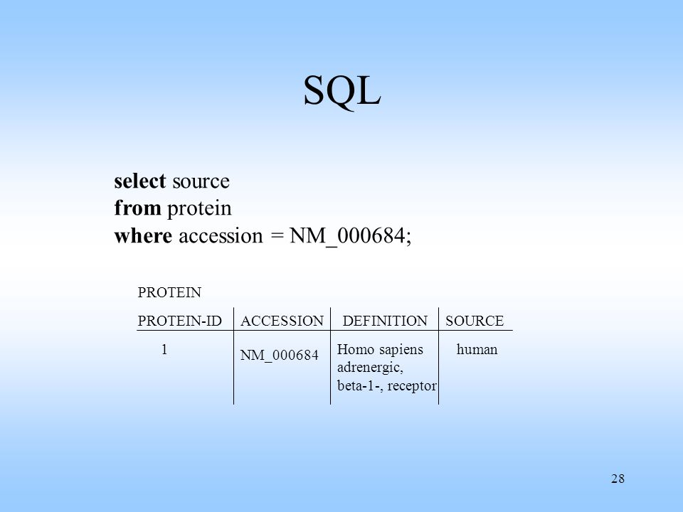 SQL select source from protein where accession = NM_000684; PROTEIN
