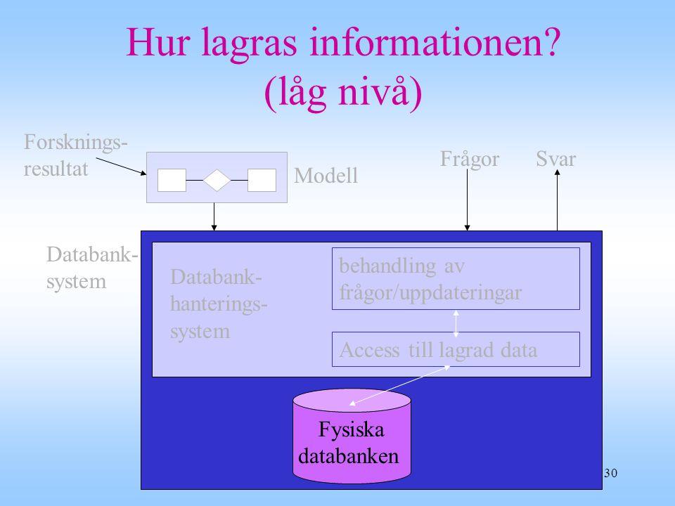 Hur lagras informationen (låg nivå)