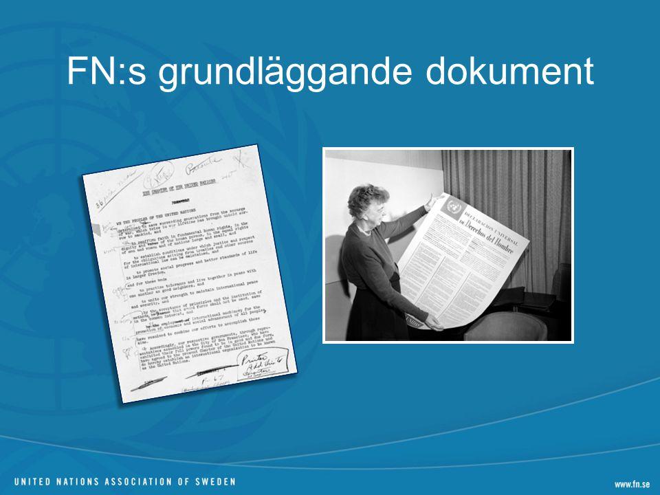 FN:s grundläggande dokument