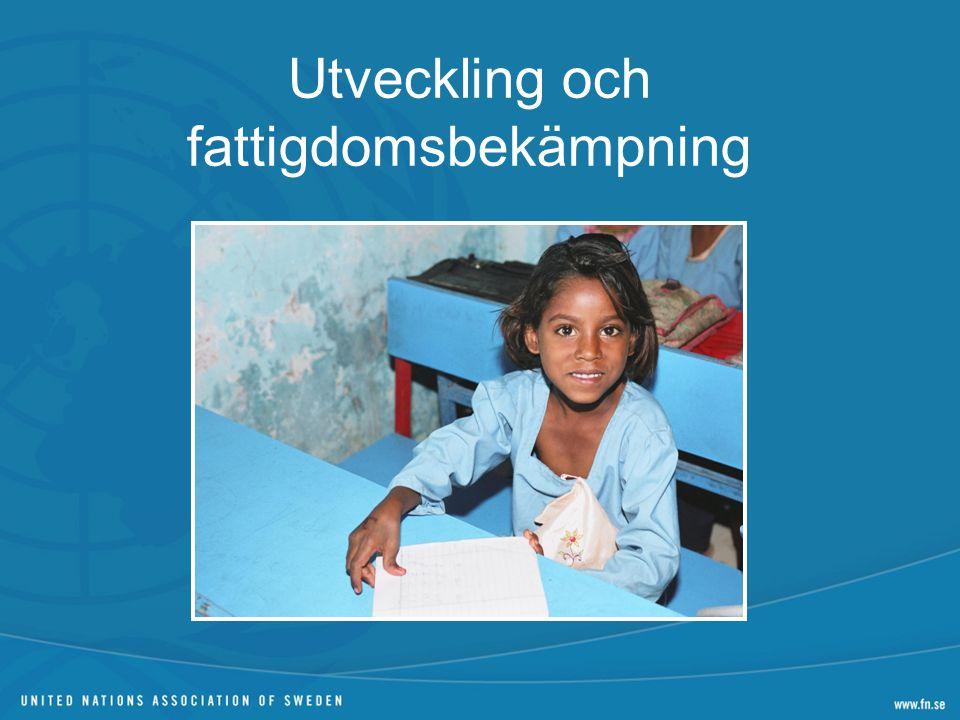 Utveckling och fattigdomsbekämpning