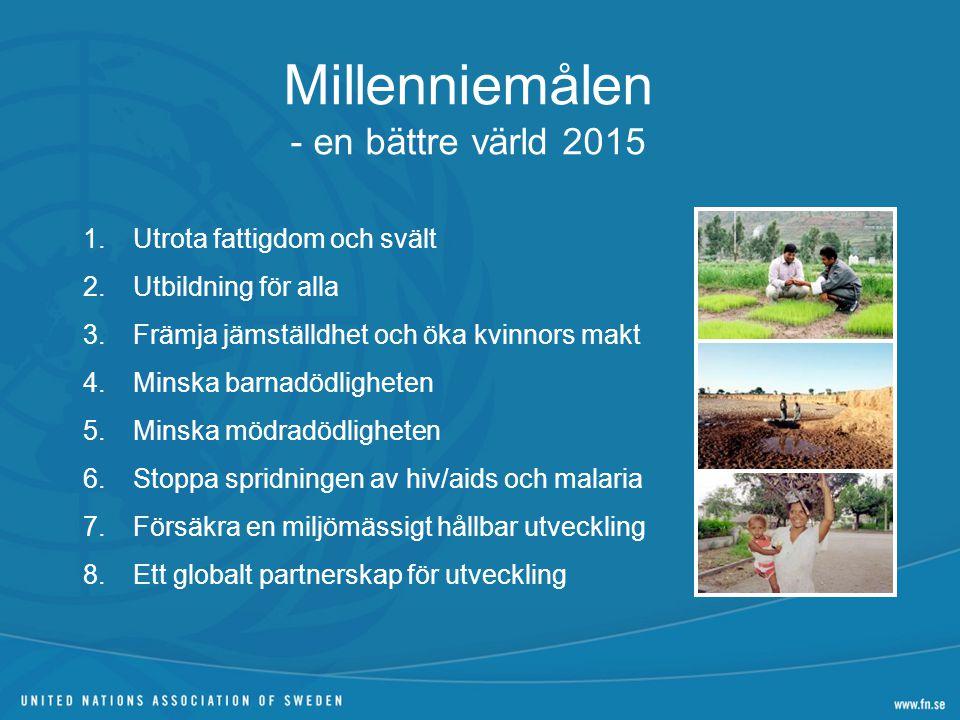 Millenniemålen - en bättre värld 2015