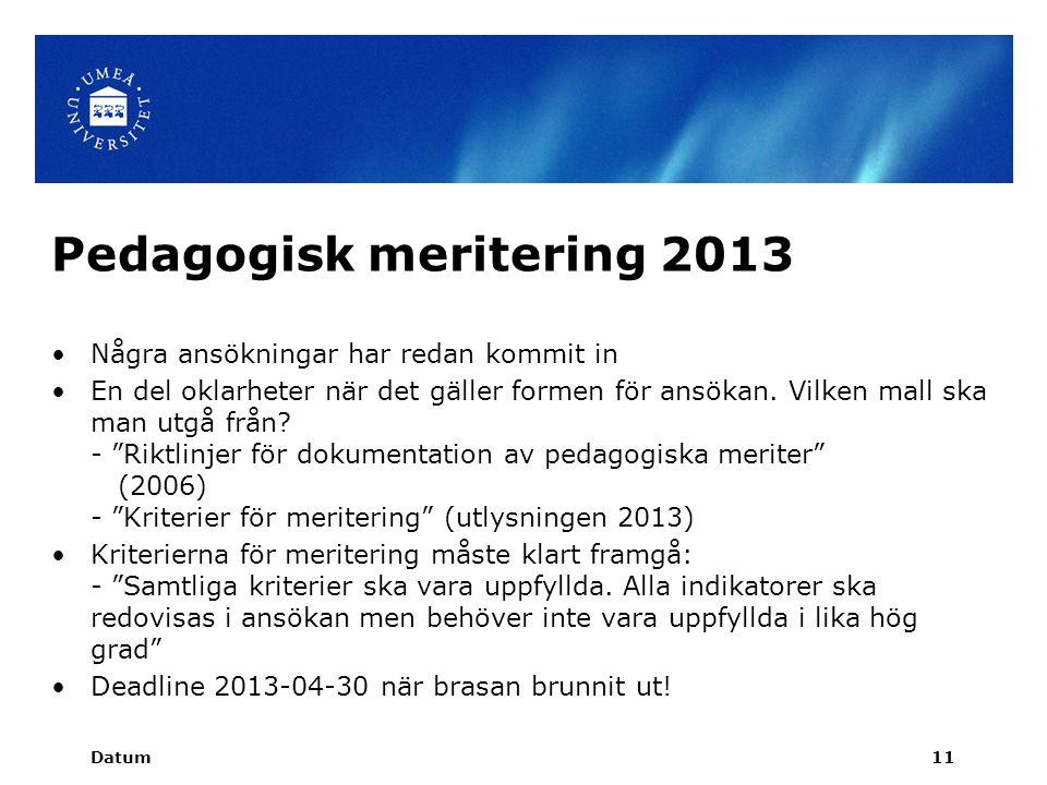 Pedagogisk meritering 2013