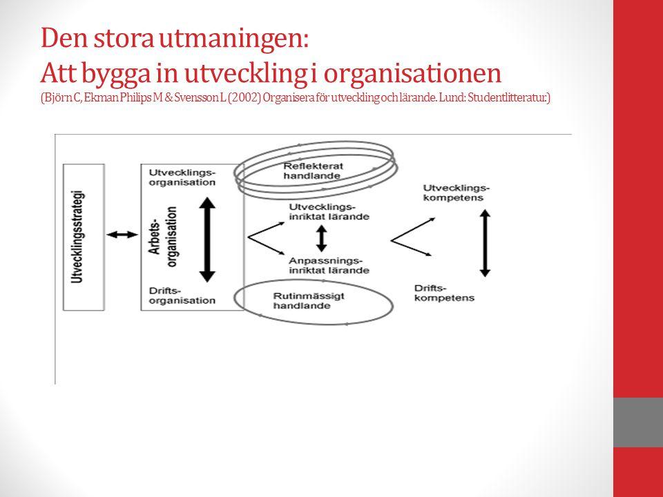 Den stora utmaningen: Att bygga in utveckling i organisationen (Björn C, Ekman Philips M & Svensson L (2002) Organisera för utveckling och lärande.