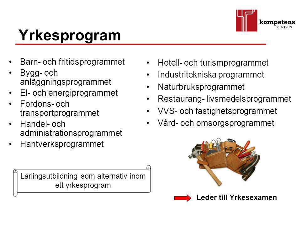 Lärlingsutbildning som alternativ inom ett yrkesprogram