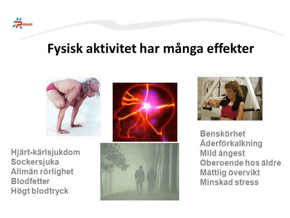 Fysisk aktivitet har många effekter