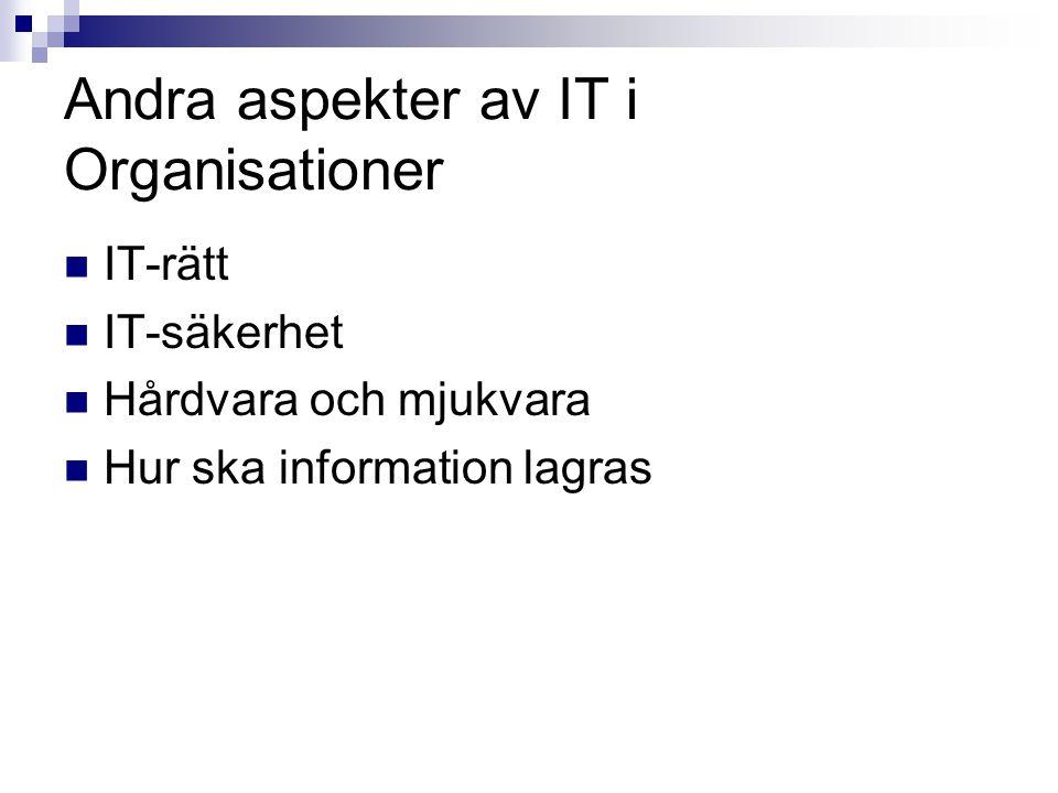 Andra aspekter av IT i Organisationer