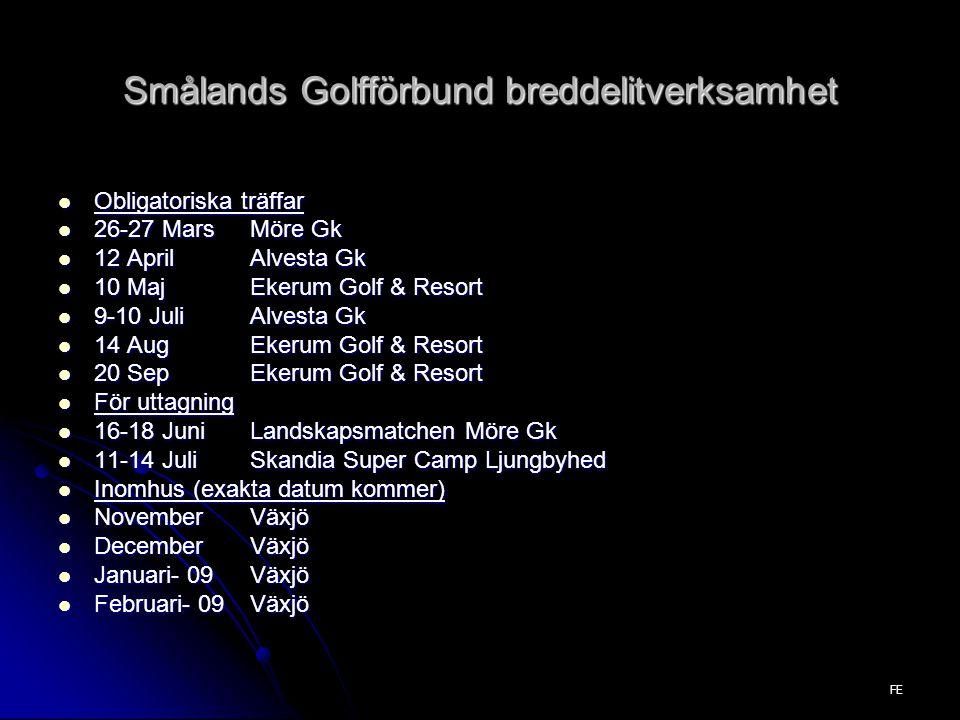 Smålands Golfförbund breddelitverksamhet