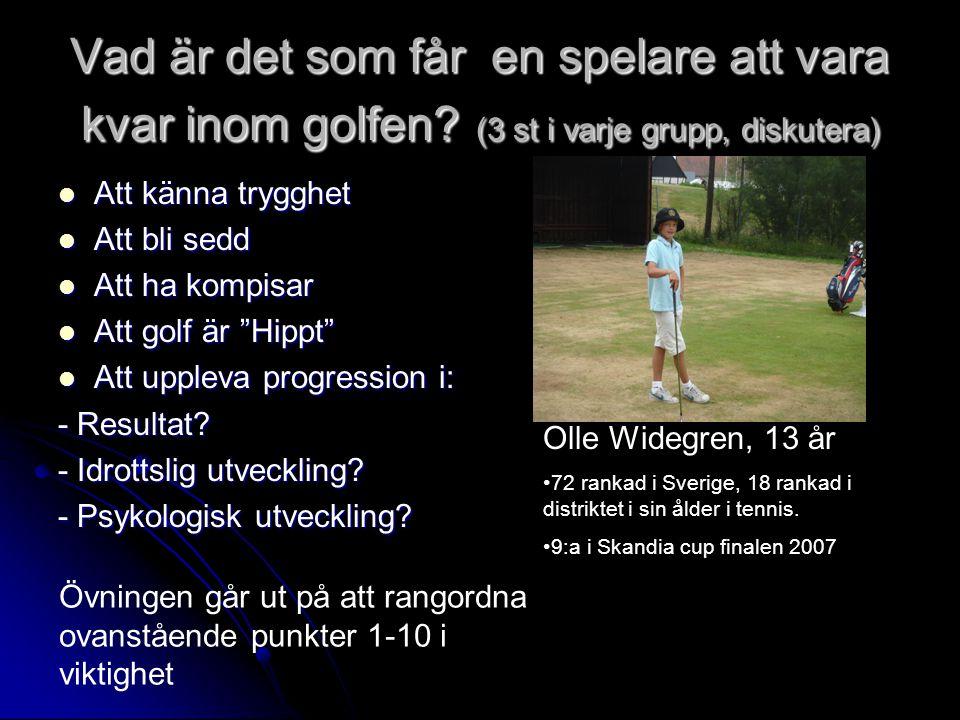 Vad är det som får en spelare att vara kvar inom golfen