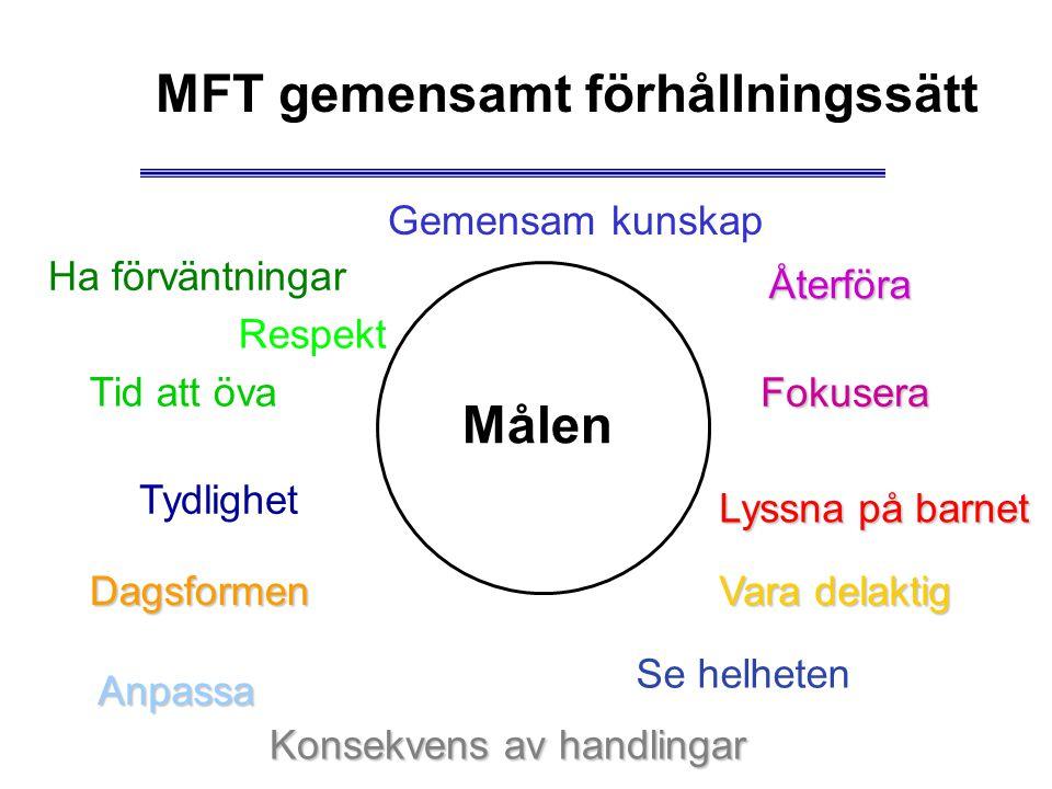 MFT gemensamt förhållningssätt