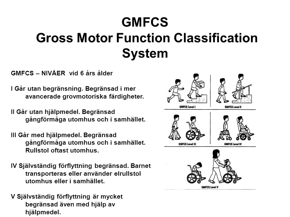 GMFCS Gross Motor Function Classification System
