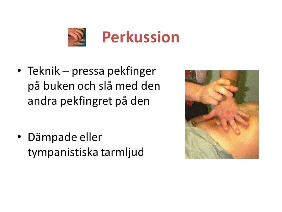 Perkussion Teknik – pressa pekfinger på buken och slå med den andra pekfingret på den.