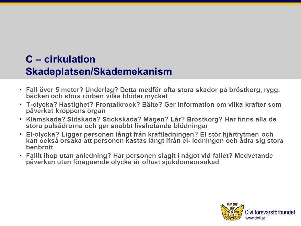 C – cirkulation Skadeplatsen/Skademekanism
