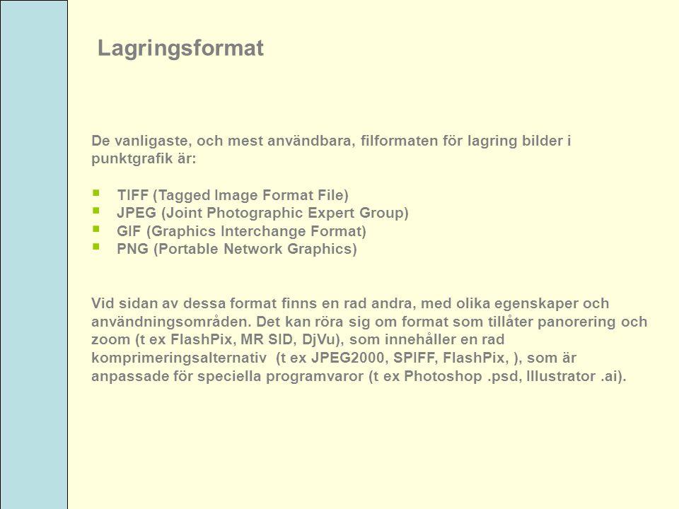 Lagringsformat De vanligaste, och mest användbara, filformaten för lagring bilder i. punktgrafik är: