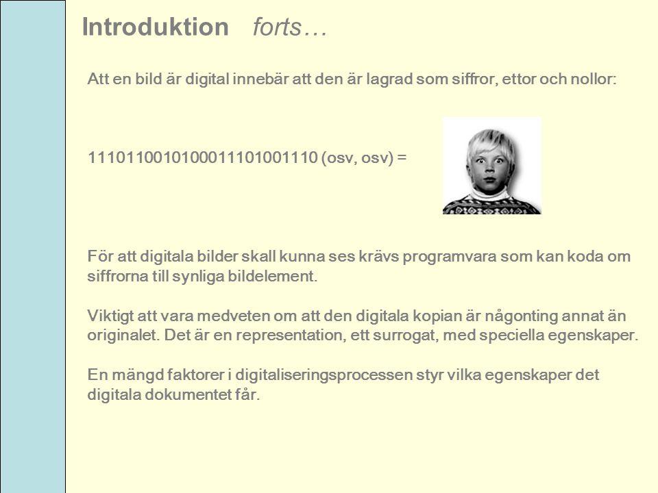 Introduktion forts… Att en bild är digital innebär att den är lagrad som siffror, ettor och nollor: