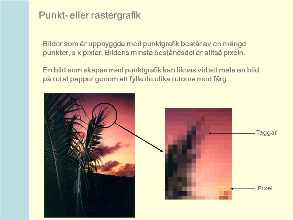 Punkt- eller rastergrafik