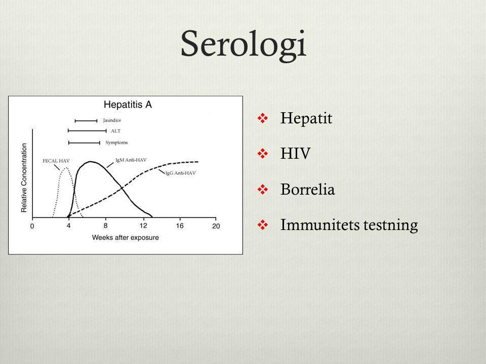 Serologi Hepatit HIV Borrelia Immunitets testning