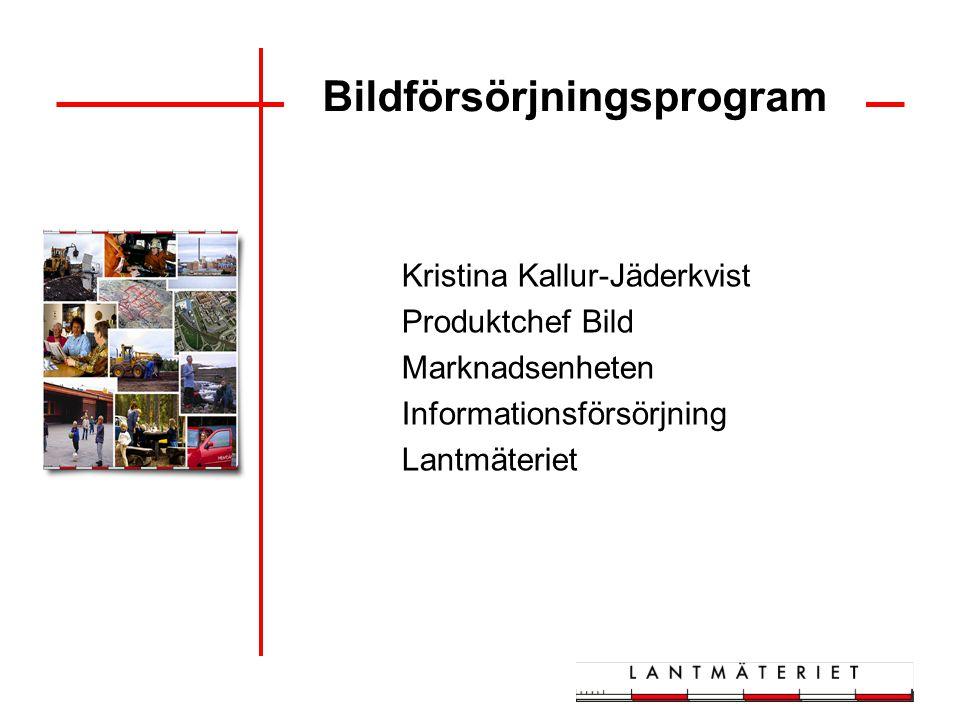 Bildförsörjningsprogram