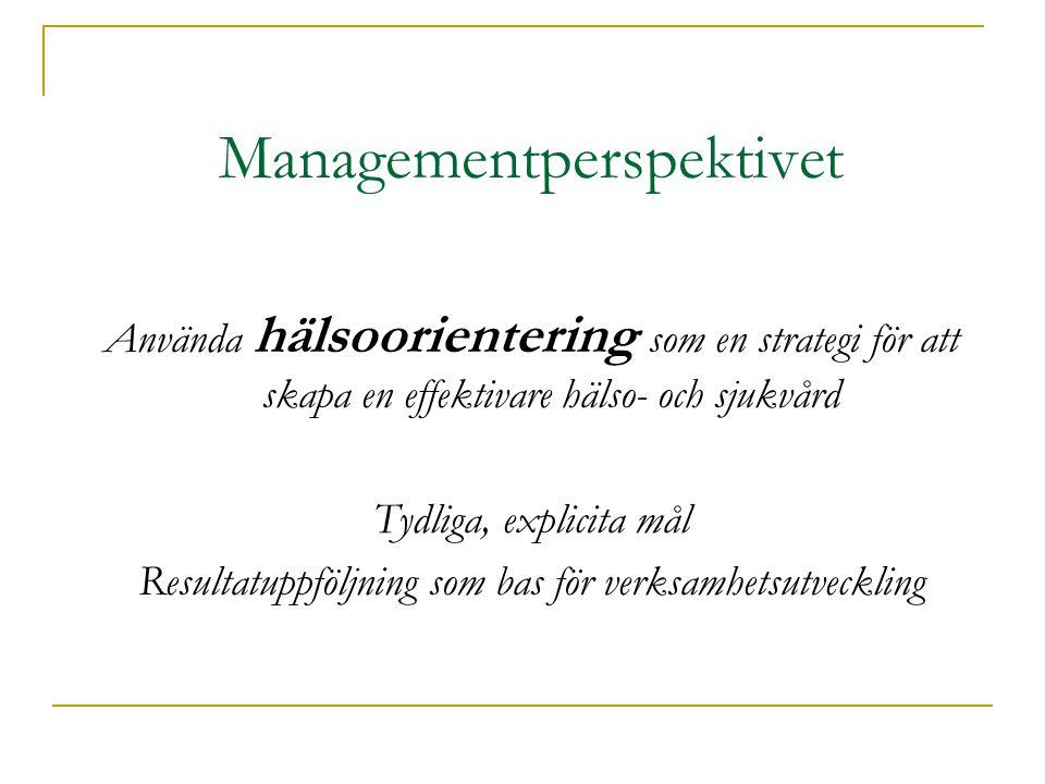 Managementperspektivet