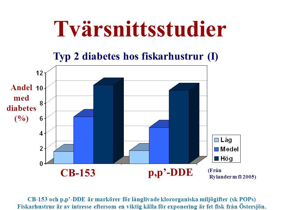 Typ 2 diabetes hos fiskarhustrur (I)