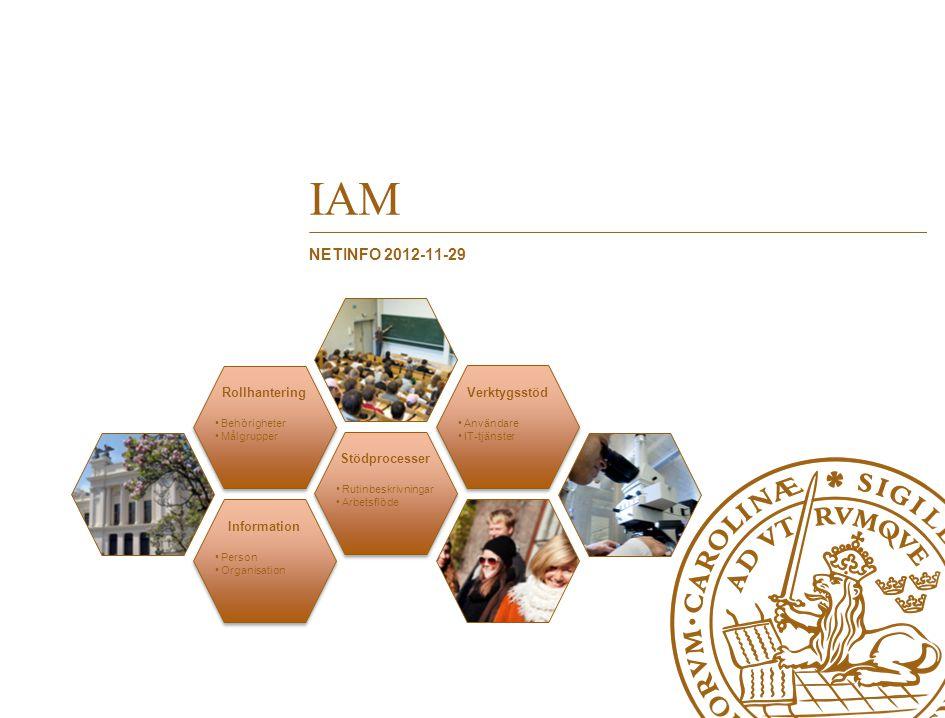 IAM NetInfo 2012-11-29 Information Stödprocesser Rollhantering
